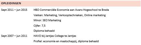 Een goed CV maken